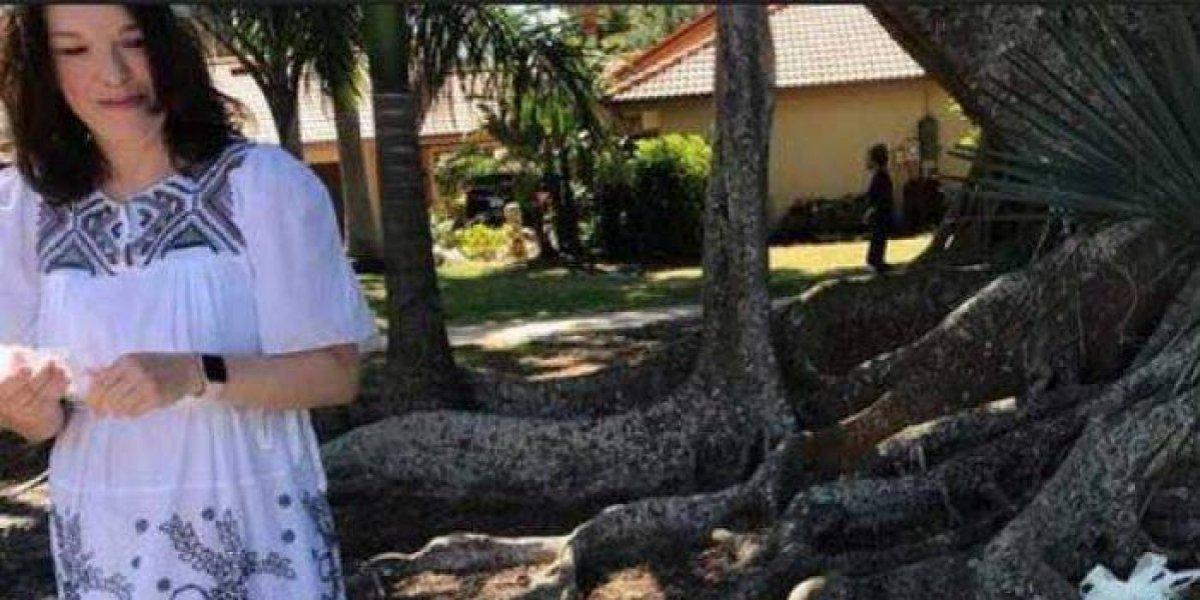 Mujer se casa con árbol centenario de Florida para evitar que lo talen