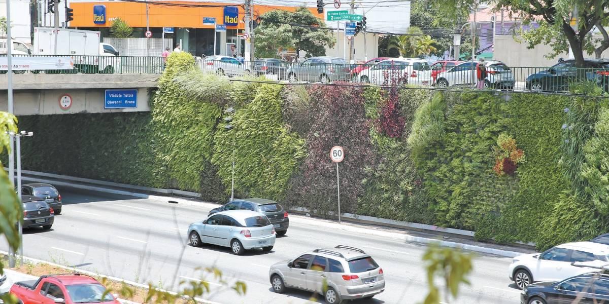 Corredores verdes devem se espalhar pela cidade de São Paulo