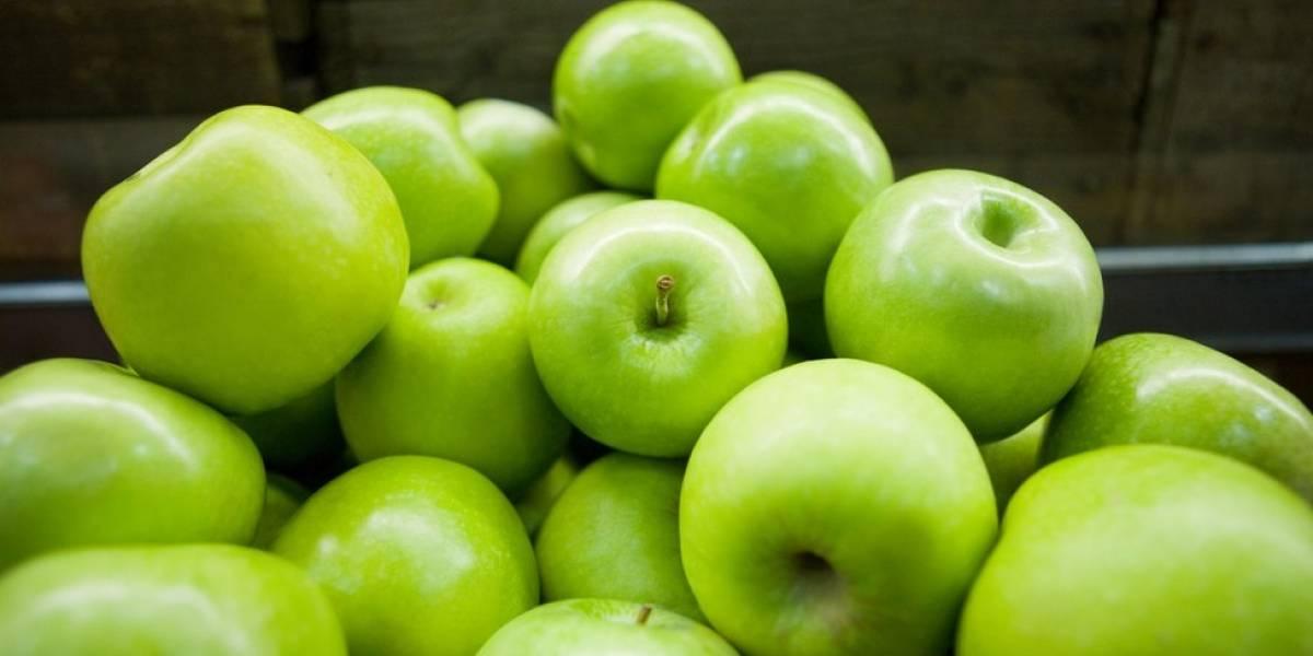 Afirman que manzanas distribuidas en P. R. no están afectadas por brote de listeria