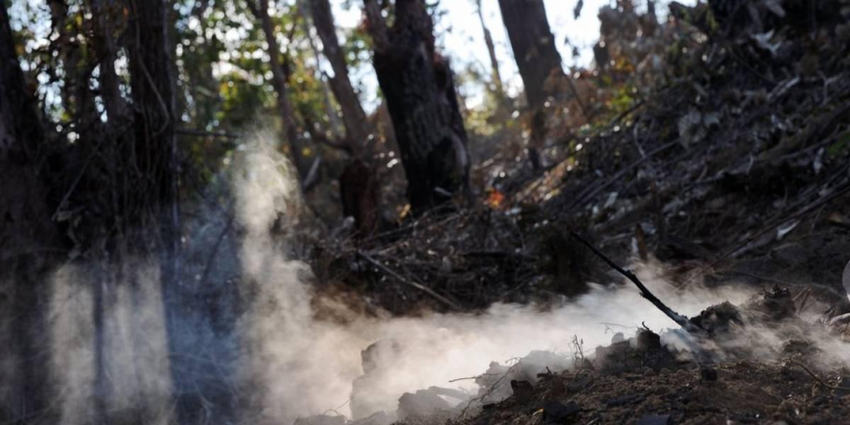 Onda de calor puede provocar incendios forestales en México