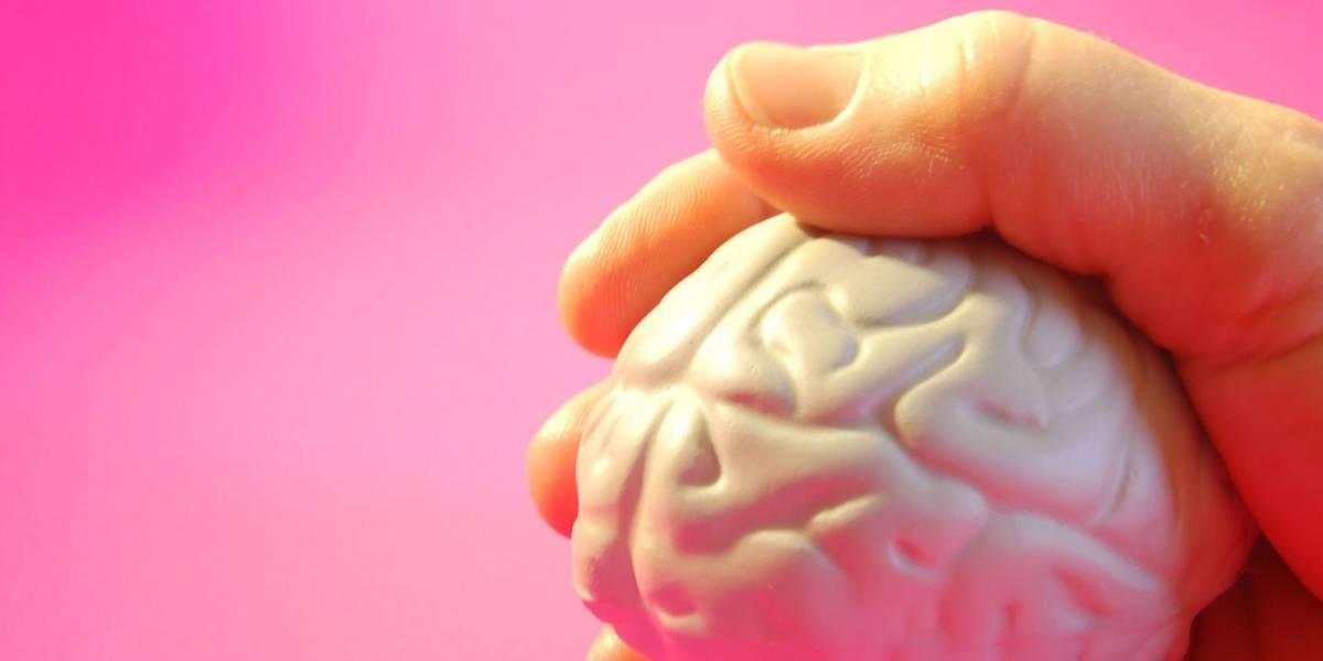 Avanço na ciência: cientistas conseguem remover Alzheimer de rato