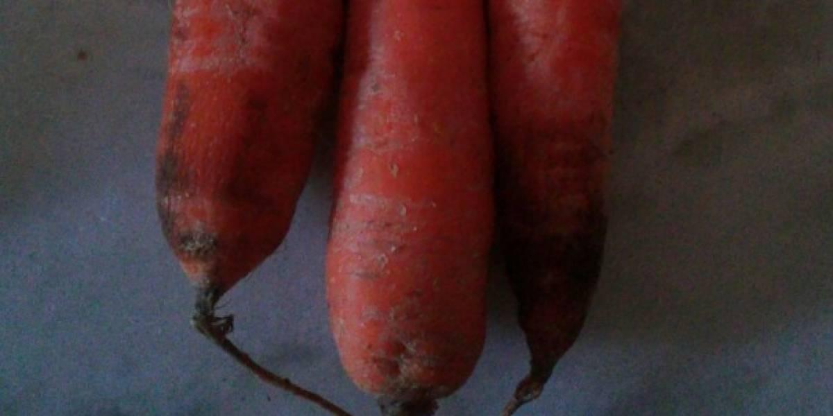 Kit com cenoura dado em escolas no Rio gera polêmica e custa 10 vezes mais