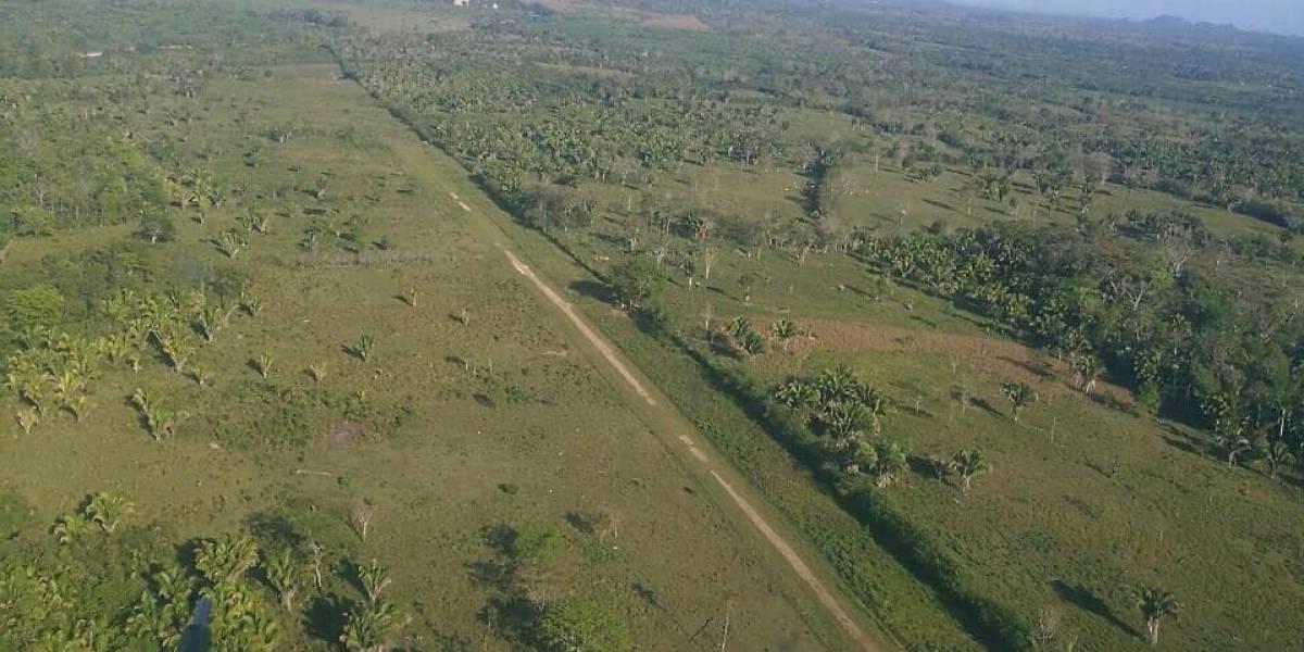 Pista clandestina con una antena para guiar a los pilotos Petén