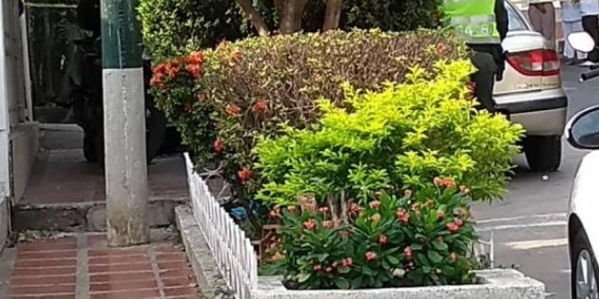 Doloroso hallazgo: Encuentran sin signos vitales a una bebé en una jardinera