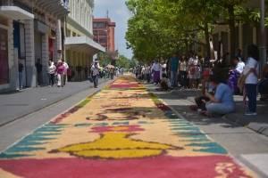 alfombra en el Paseo de la Sexta