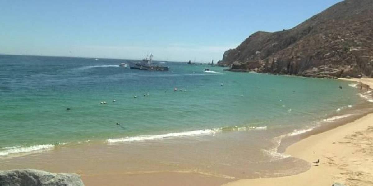 Mapa: ¿Dónde están las playas mexicanas con Blue Flag?