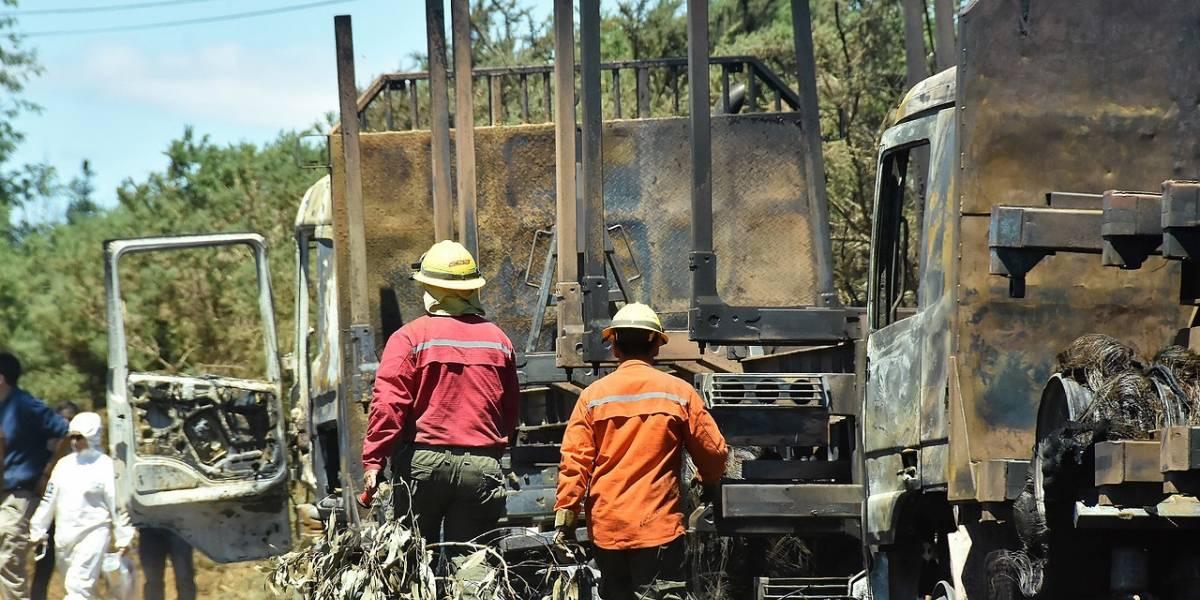 Secuestrados y amarrados: encapuchados habrían agredido a trabajadores forestales