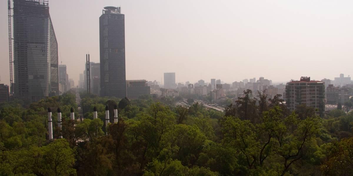 Inmobiliarias amenazan 15 hectáreas de Bosques de Aragón y Chapultepec