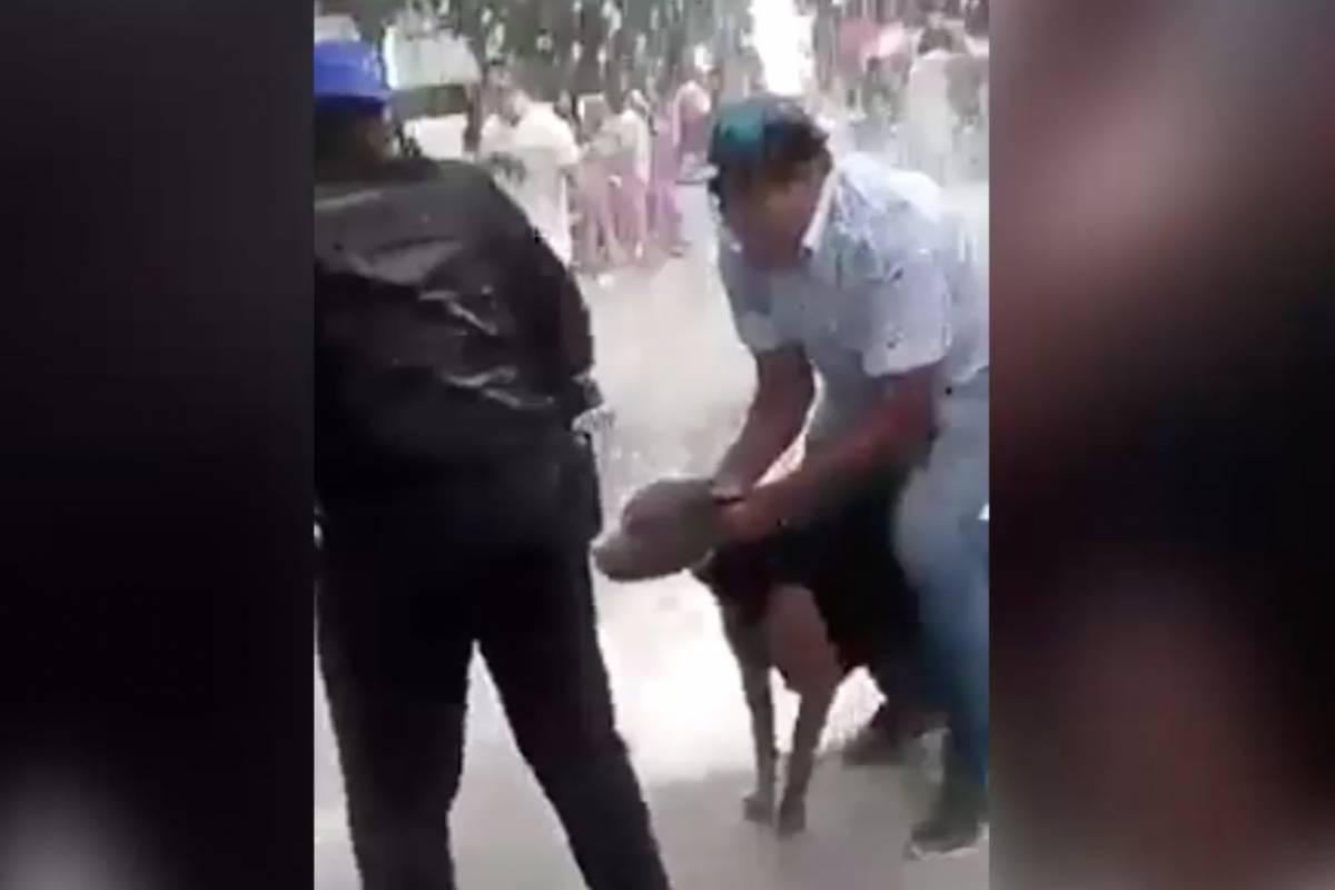 Difunden ataque de perro pitbull a una niña en la delegación Iztacalco
