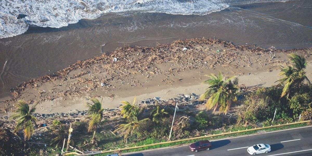 Aprueban medida para crear comité de expertos que atienda erosión costera