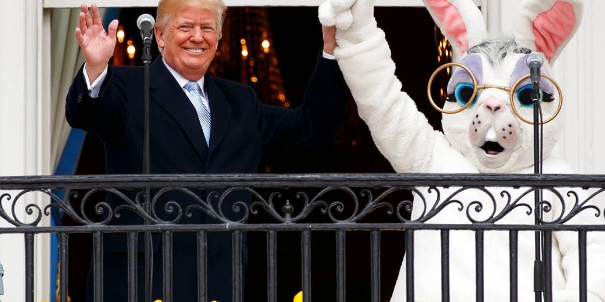 FOTOS. Con conejos y huevos de Pascua, Trump celebró en la Casa Blanca
