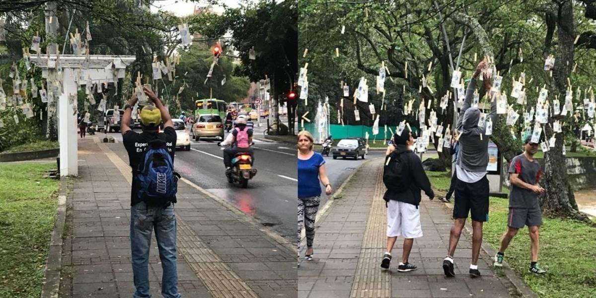 El árbol lleno de billetes que apareció en Bogotá continúa su gira por otras ciudades