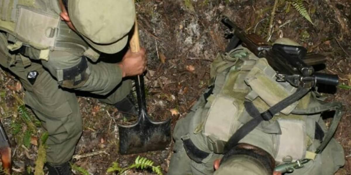 Localizan armamento en área protegida de la Sierra de las Minas