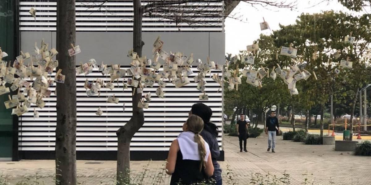 Resuelto el misterio del 'árbol de billetes' que apareció en varias ciudades del país