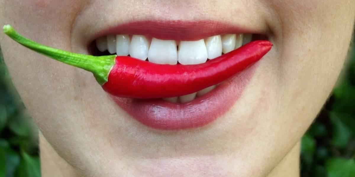 Cómo detecta tu lengua los sabores? | Publimetro