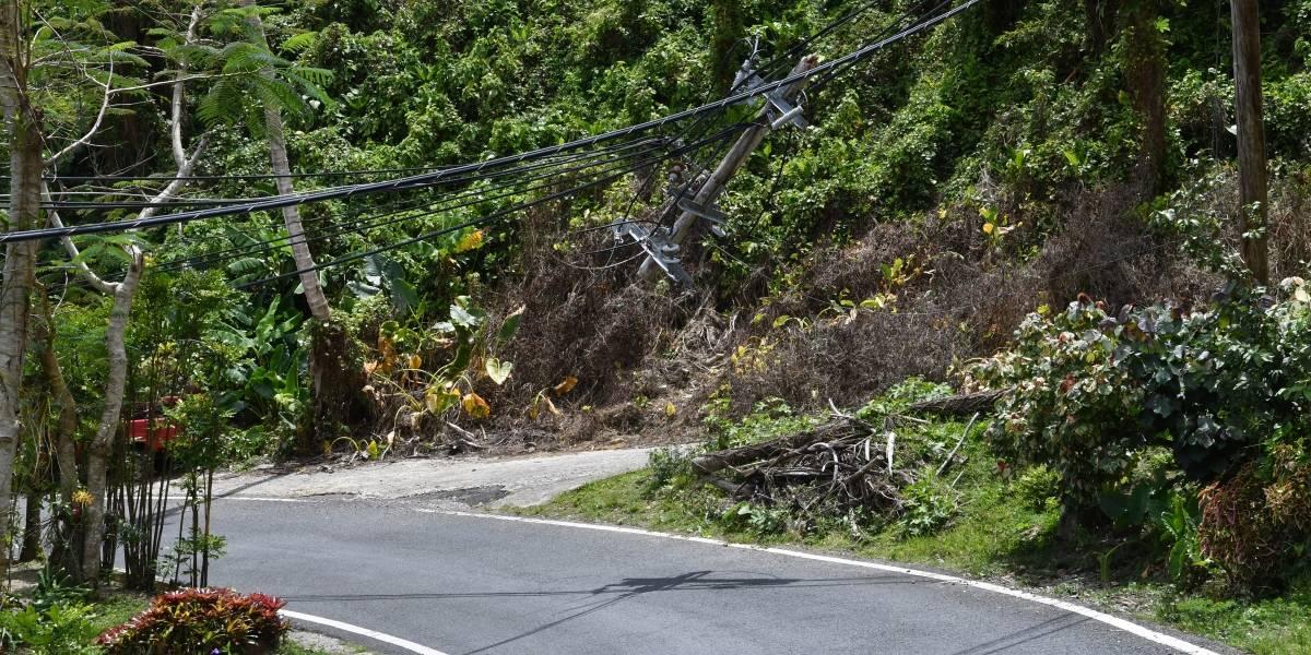 Roban cables soterrados de AEE en Naguabo