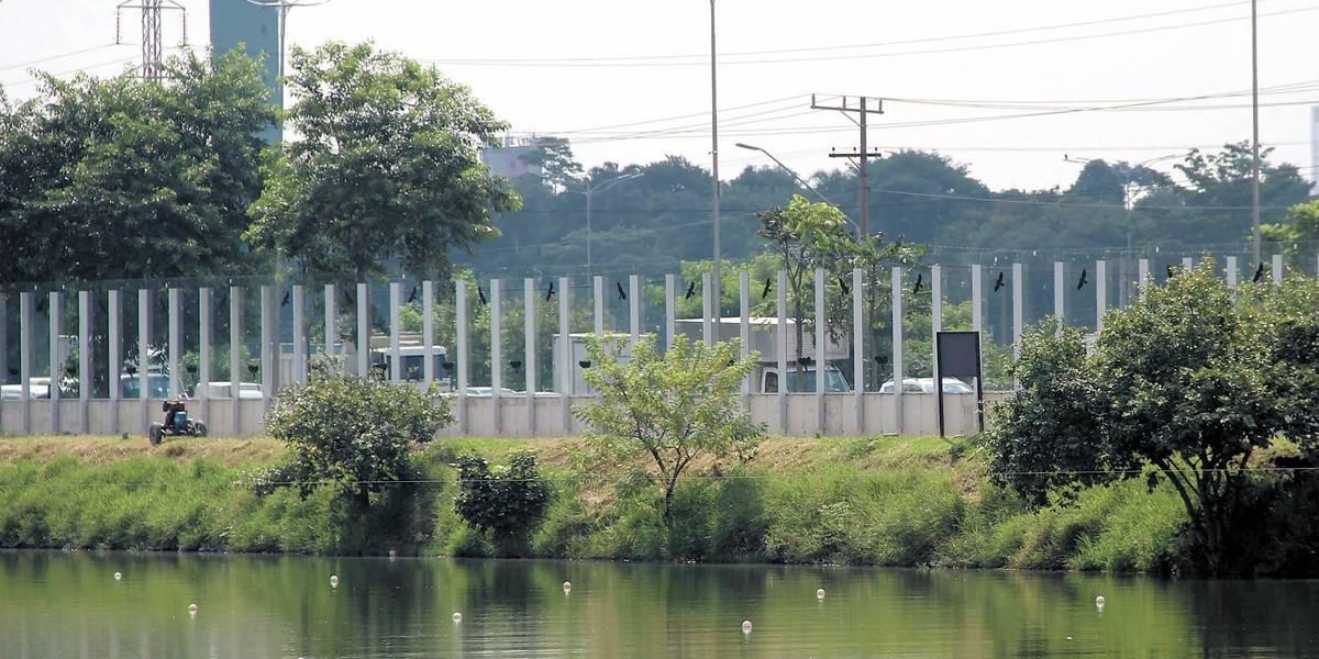 Muro de vidro da raia olímpica da USP é inaugurado