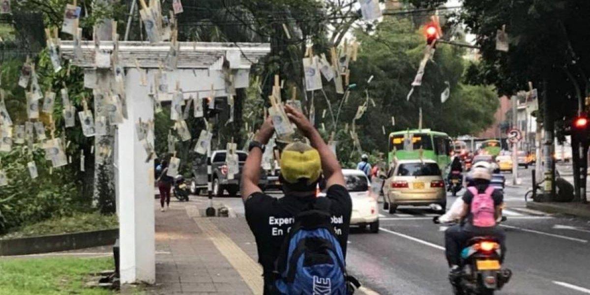 De um dia para o outro, notas de dinheiro aparecem penduradas em árvores na Colômbia