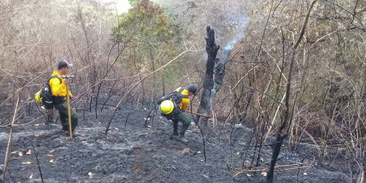 Canícula ha provocado al menos 6 incendios forestales en Guatemala