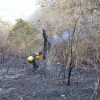 incendiosforestales20184-689a55daf8c06daf286872b9ee11b41f.jpg