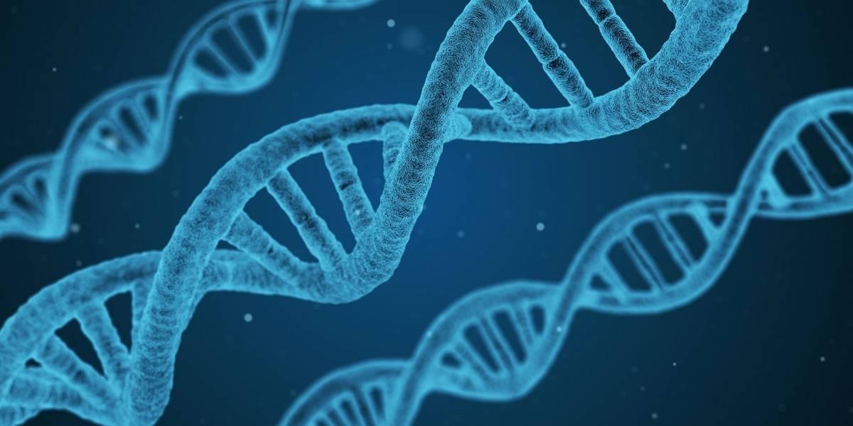 La ciencia revela que sí es posible que parte del ADN mitocondrial provenga del padre