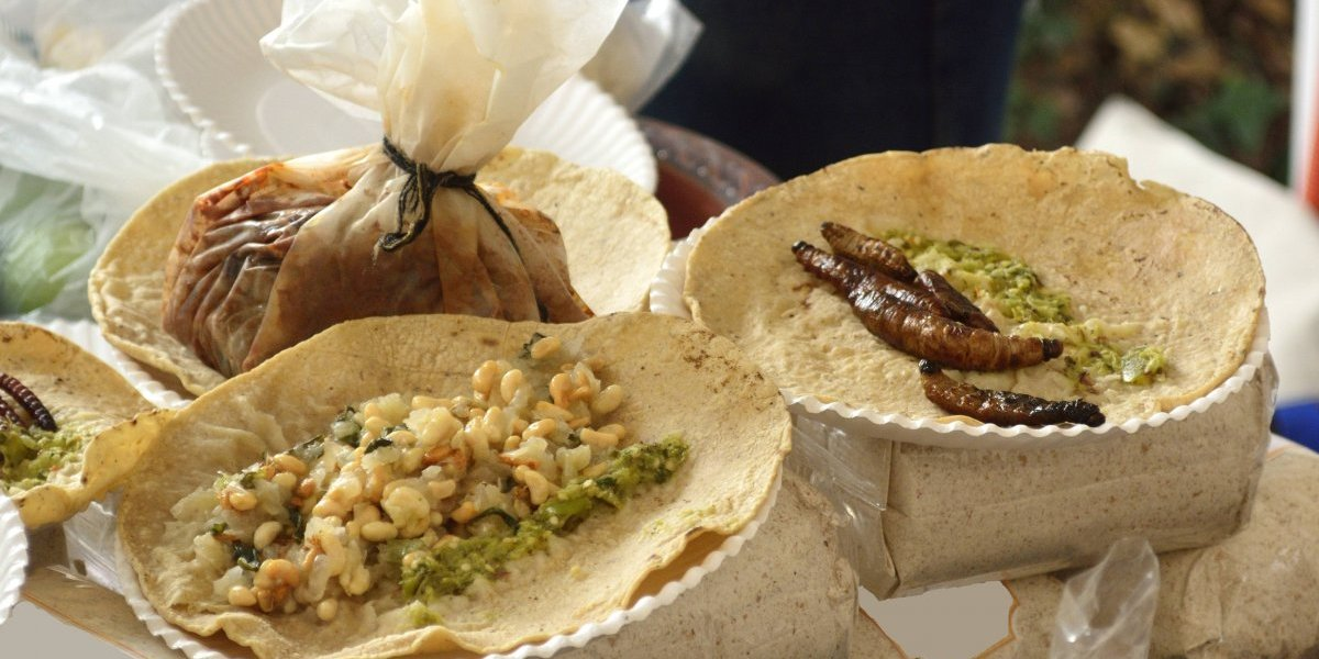 5 comidas raras del mundo