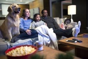 Maratonear en Netflix es mejor acompañado de tu mascota