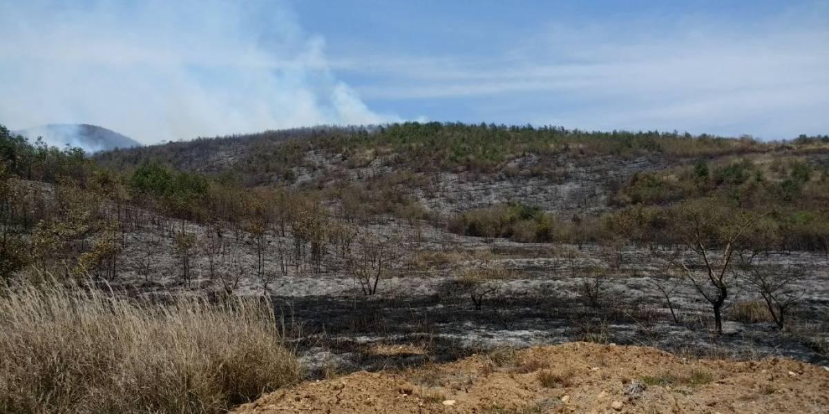 Según Conred, el 90% de los incendios forestales son provocados