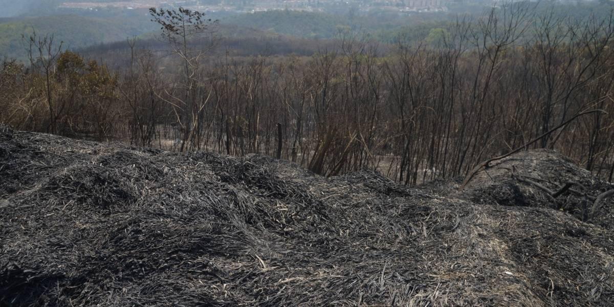 ¡Desolador! Así luce el área del incendio en El Naranjo