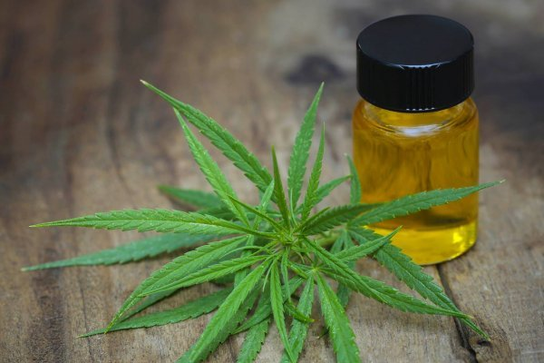 Uno de los mayores beneficios del cannabis medicinal es que atenúa síntomas de enfermedades crónicas y ayuda a disminuir el dolor y la inflamación muscular. / Thinkstock