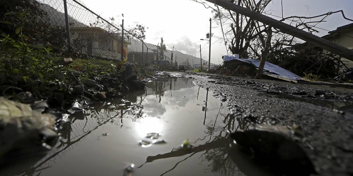 Trump preguntó si EEUU podía vender Puerto Rico, según una exministra
