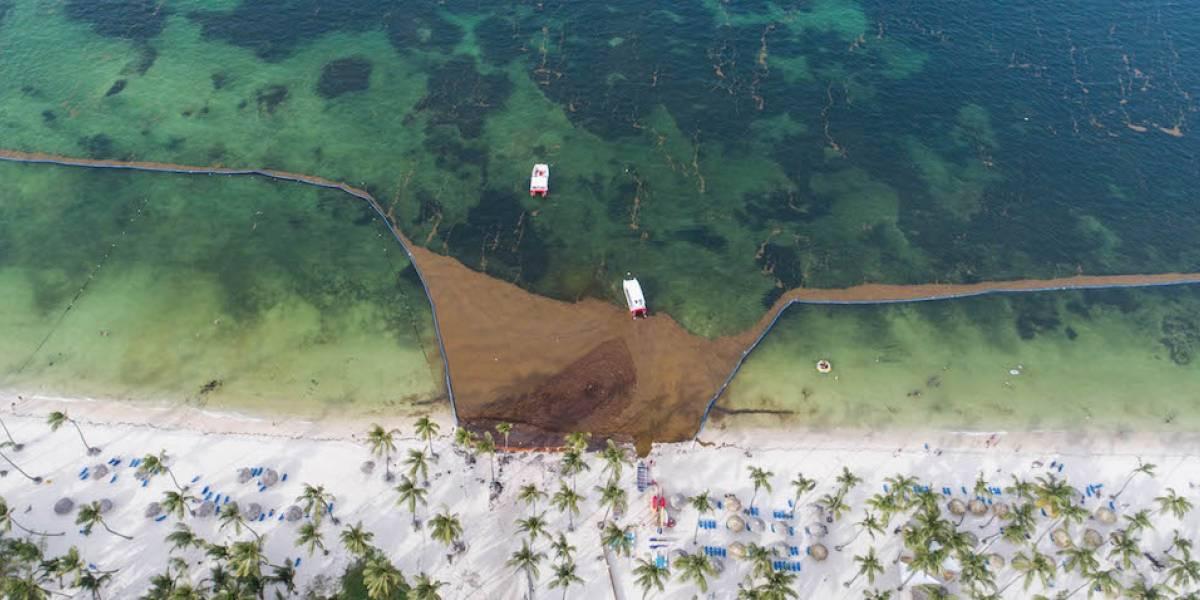 Punta Cana: Paraíso Turístico que sucumbe a la pérdida de playa y el afán hotelero
