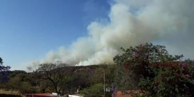 Incendio en el Bosque de La Primavera destruye ya dos mil hectáreas