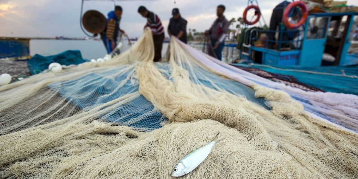 Liberan a pescadores guatemaltecos retenidos en Belice