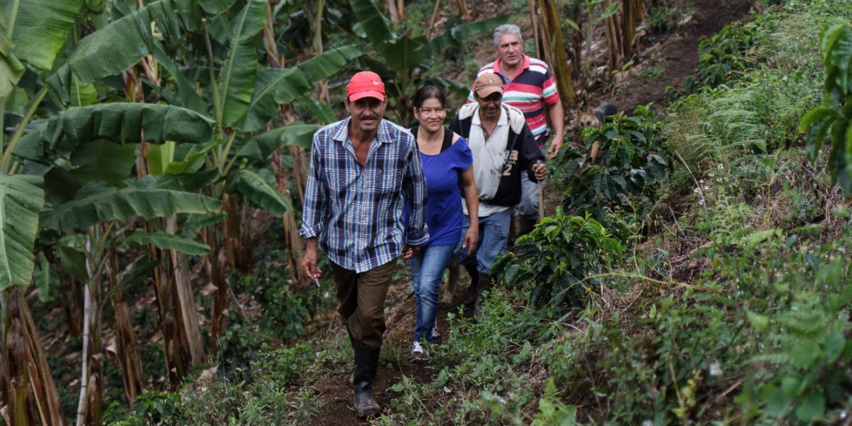 Trujillo, en el Valle, se convirtió en un buen ejemplo de resiliencia