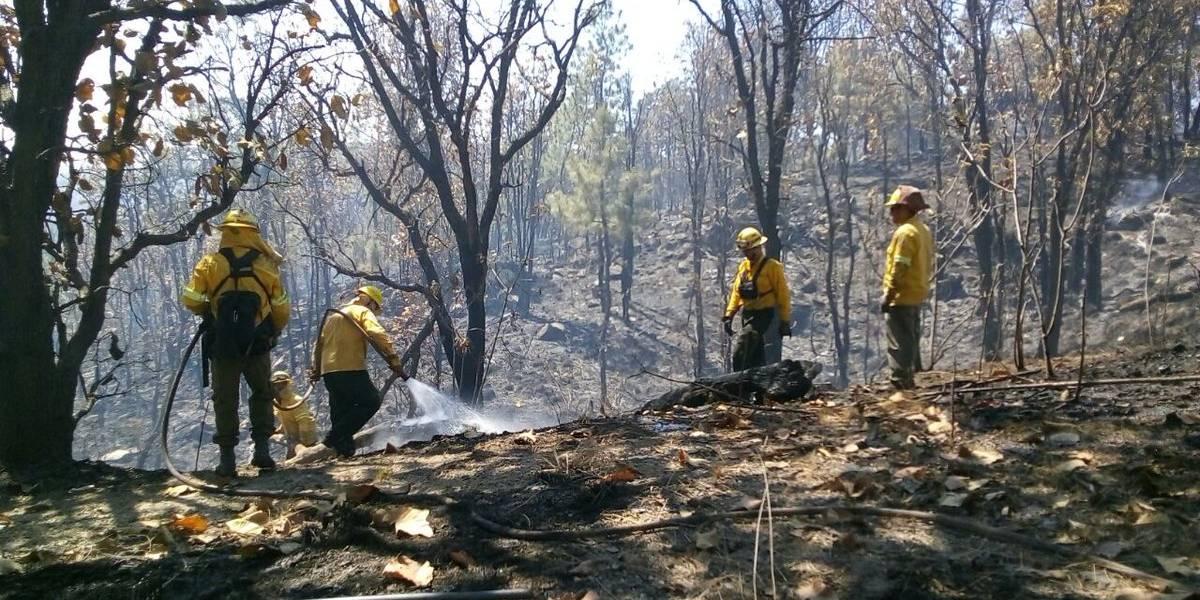 Logran controlar incendio en el Bosque de La Primavera