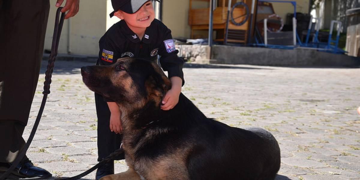 Policía Nacional abre adopción de canes en proceso de retiro