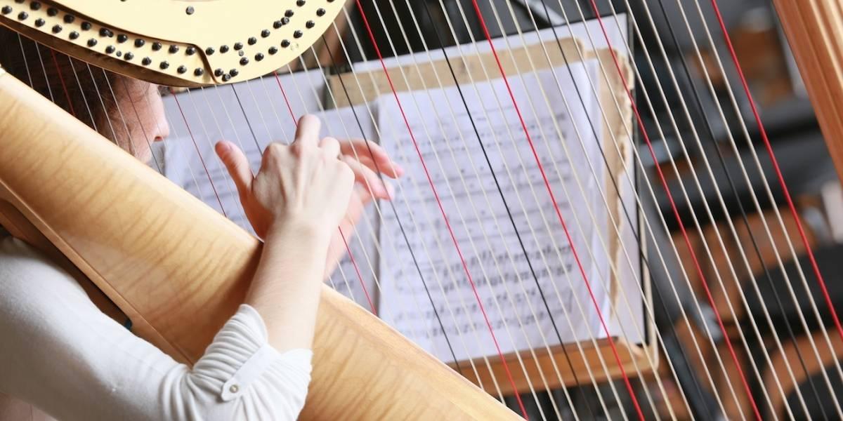 Fim de semana em SP terá concertos gratuitos da Orquestra Sinfônica Estatal Russa