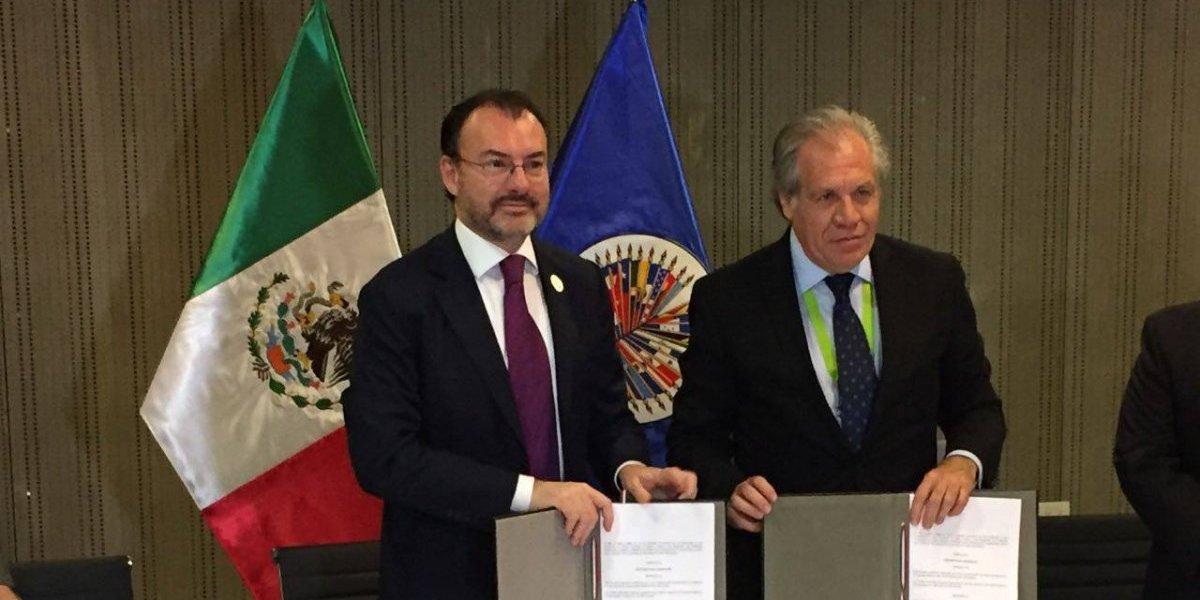 OEA participará como observador en las elecciones del 1 de julio