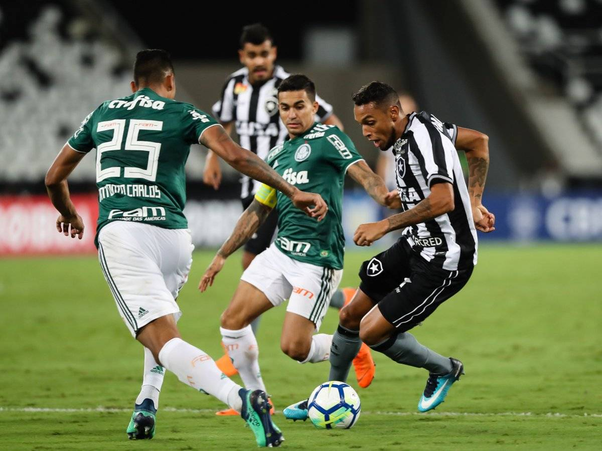 Palmeiras e Botafogo ficaram no 1 a 1