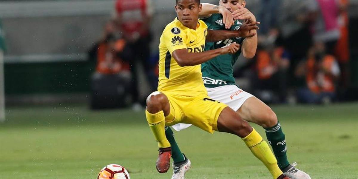 Preocupación en la Selección Colombia por lesión de Wílmar Barrios, de Boca Juniors
