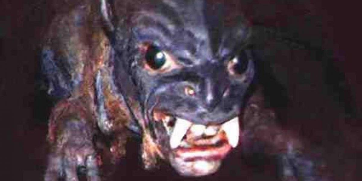 ¿Podría llegar a Chile? Chupacabras reaparece, aterroriza a los argentinos y revelan terrorífica foto para probar su existencia
