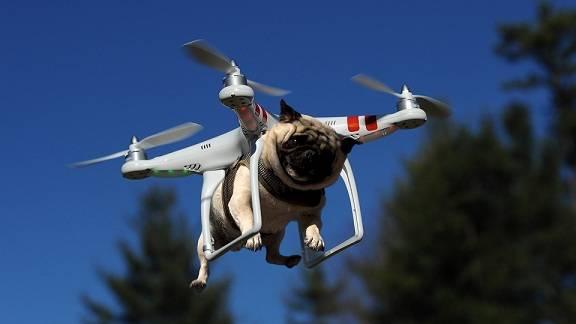 Probó su dron Mavic Air desde una terraza y desapareció misteriosamente