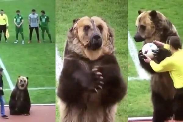 Indignación en el fútbol por maltrato animal