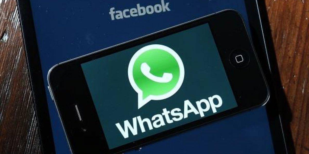 WhatsApp: ¿Borraste alguna imagen y la quieres ver de nuevo? Así puedes volver a descargarla