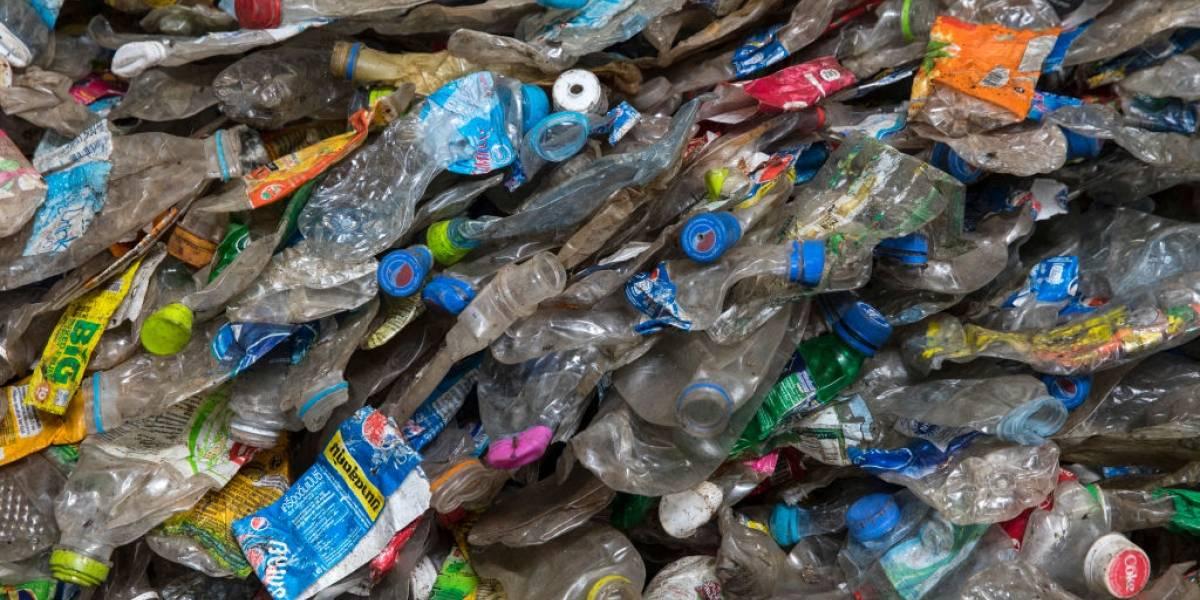 Cientistas descobrem enzima que 'come' plástico e pode ajudar na reciclagem