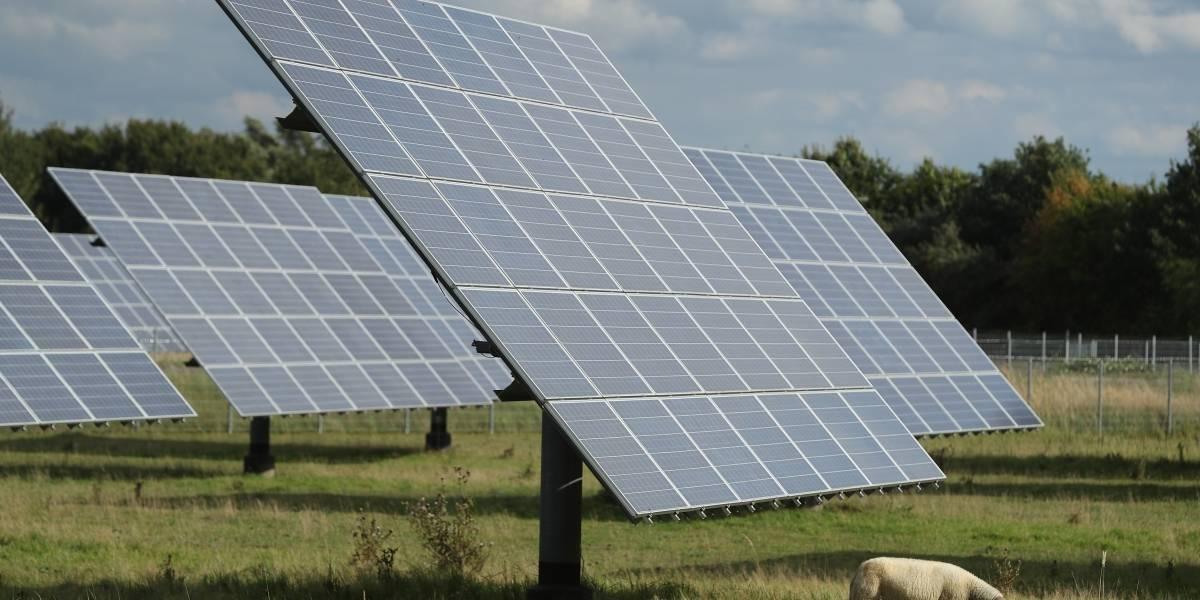 Una granja solar es la encargada de abastecer de luz a la población de una vereda en Colombia