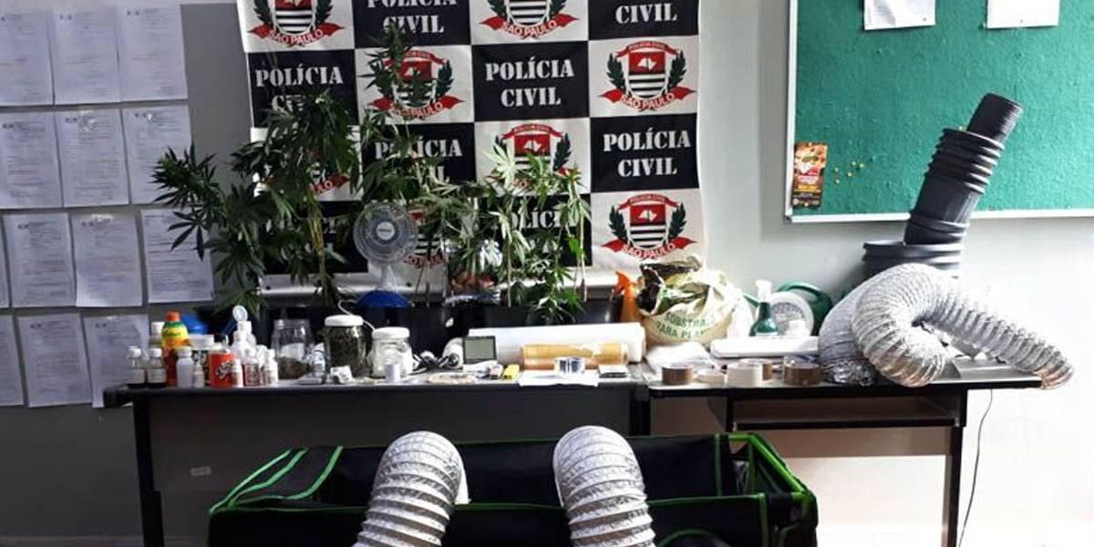Polícia prende homem com plantação de maconha em condomínio de alto padrão