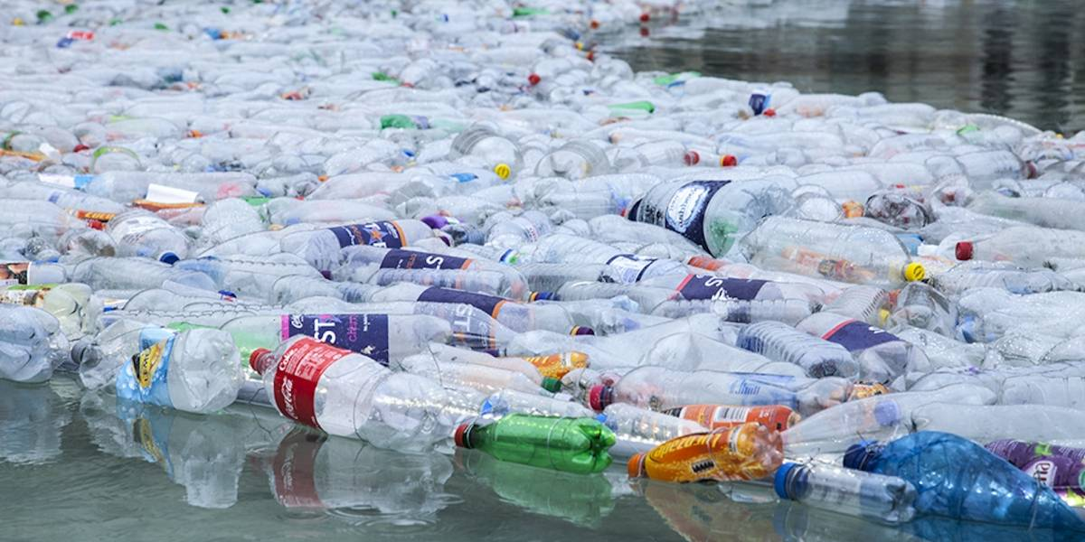 Enzima mutante descubierta por accidente podría salvar al mundo del plástico