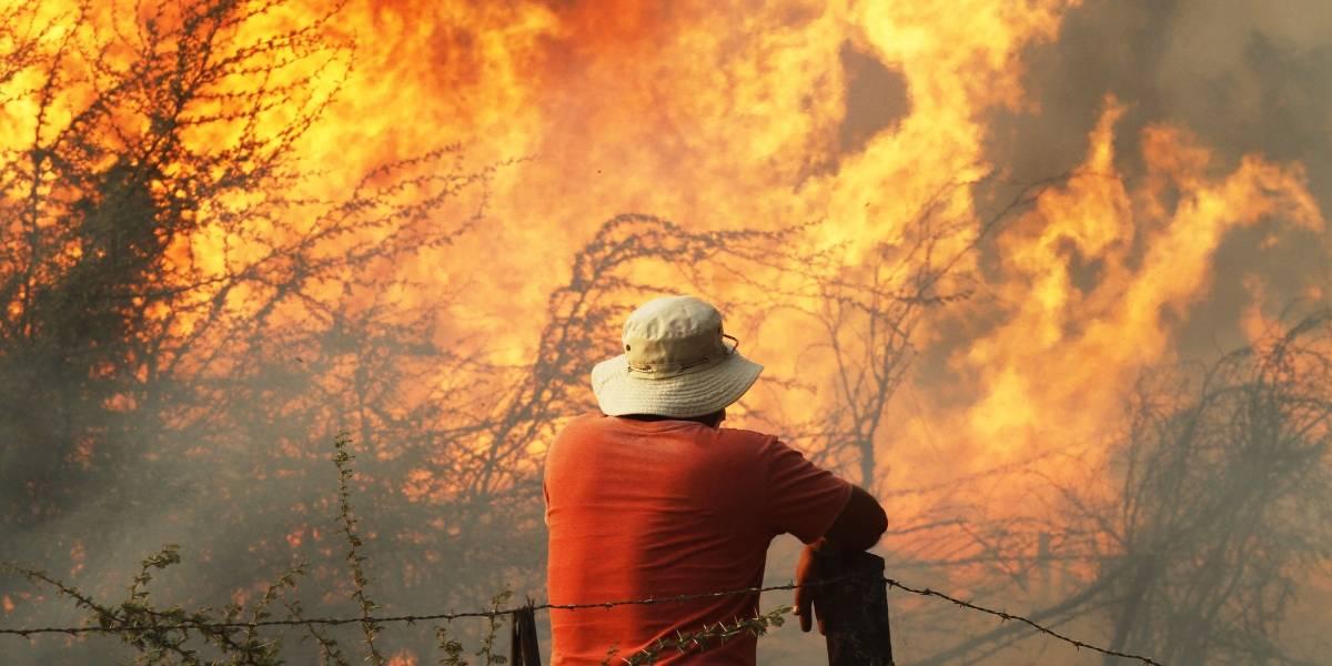 Onemi reporta 43 incendios forestales activos y 7.471 damnificados